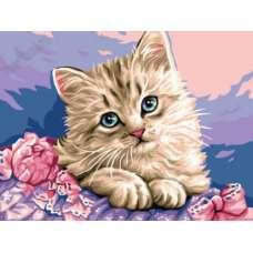 "Картина по номерам раскраска ""Милый котенок"""