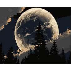 """Картина по номерам раскраска """"Сказочная луна"""""""