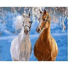 "Картина по номерам раскраска "" Парочка лошадей """