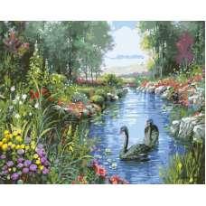 """Картина по номерам раскраска """"Черные лебеди"""""""