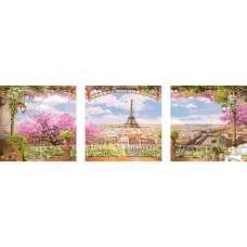 "Триптих по номерам раскраска ""Весенний Париж"""