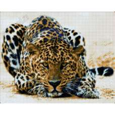 """Алмазная живопись """"В глаза леопарду"""""""