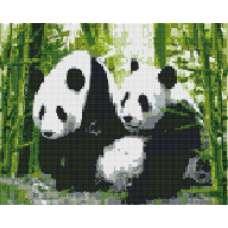 """Алмазная живопись """"Милые панды"""""""