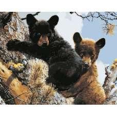 """Картина по номерам раскраска """"Медвежата"""""""