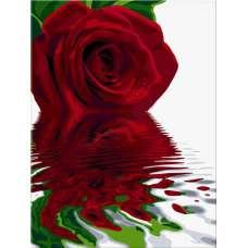 """Картина по номерам раскраска """"Отражение красной розы"""""""