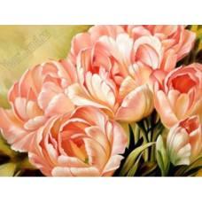 """Картина по номерам раскраска """"Нежно-розовые"""""""
