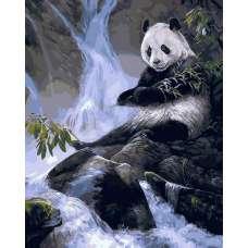 """Картина по номерам раскраска """"Панда"""""""