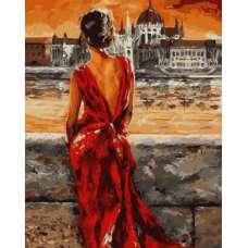 """Картина по номерам раскраска """"Взгляд через реку"""""""