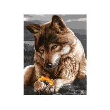 """Картина по номерам раскраска """"Взгляд на цветок"""""""