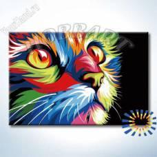 """Картина по номерам раскраска """"Радужный кот"""""""