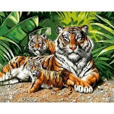 """Картина по номерам раскраска """"Семья тигров"""""""