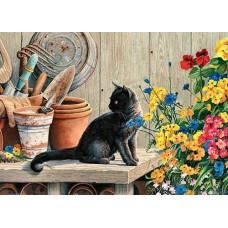 """Картина по номерам раскраска """"Черный котенок"""""""