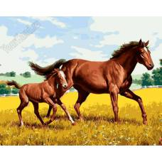 """Картина по номерам раскраска """"Лошадь и жеребенок"""""""