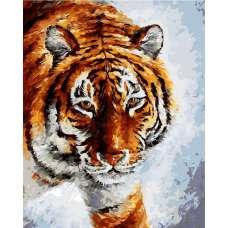 "Картина по номерам раскраска ""Тигр"""