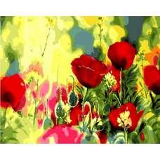 """Картина по номерам раскраска """"Маковое поле"""""""