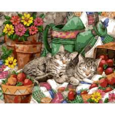 """Картина по номерам раскраска """"2 котенка"""""""