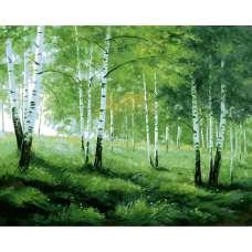 """Картина по номерам раскраска """"Лесная полянка"""""""