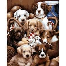 """Картина по номерам раскраска """"Семь щенят"""""""