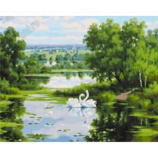 """Картина по номерам раскраска """"2 лебедя"""""""