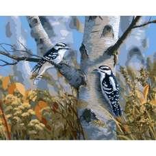 """Картина по номерам раскраска """"Птички на березе"""""""