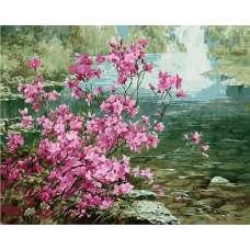 "Картина по номерам раскраска ""Розовый куст"""