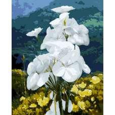"""Картина по номерам раскраска """"Букет белых цветов"""""""