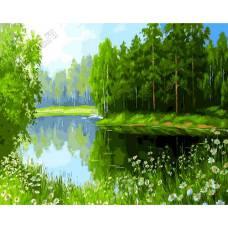 "Картина по номерам раскраска ""Райское озеро"""