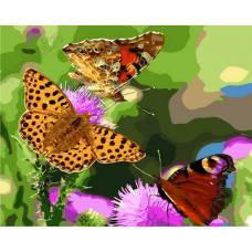 "Картина по номерам раскраска ""Бабочки"""