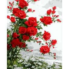 """Картина по номерам раскраска """"Шикарные розы"""""""