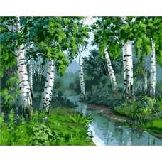 """Картина по номерам раскраска """"Ручеек в березовом лесу"""""""