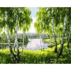 """Картина по номерам раскраска """"Озеро в березовой роще"""""""