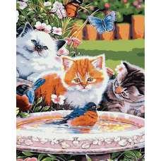"""Картина по номерам раскраска """"Котята и птенец"""""""