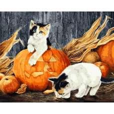"""Картина по номерам раскраска """"Котята в тыкве"""""""