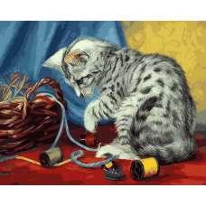 """Картина по номерам раскраска """"Котенок с нитками"""""""