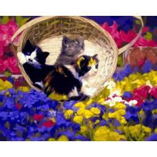 """Картина по номерам раскраска """"Котята в лукошке"""""""
