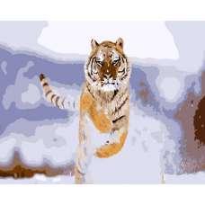 """Картина по номерам раскраска """"Тигр в прыжке"""""""