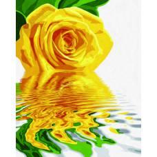 """Картина по номерам раскраска """"Отражение желтой розы"""""""