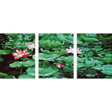 """Триптих по номерам на холсте """"Цветы"""""""